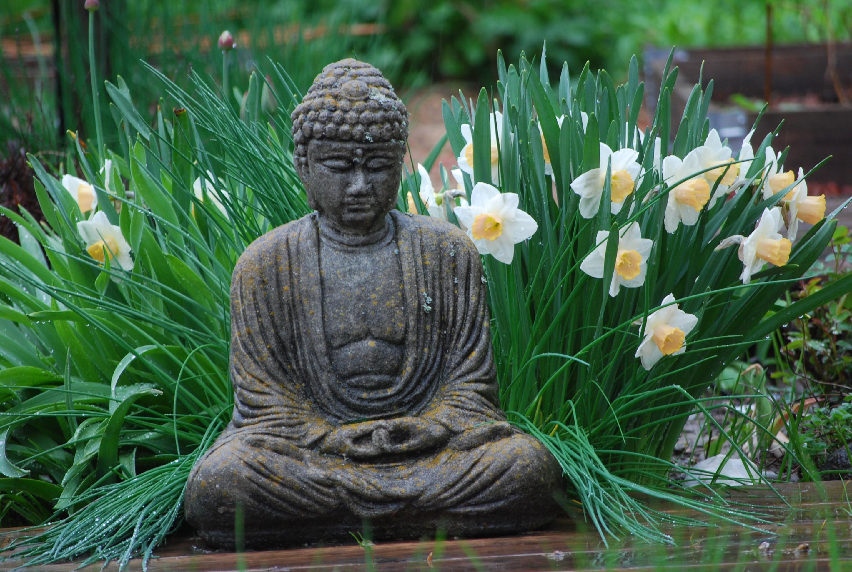 May 6 Buddha's Birthday Celebration