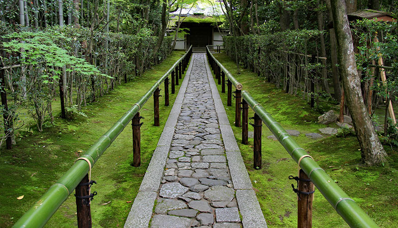 stone path with green bamboo railings and forest