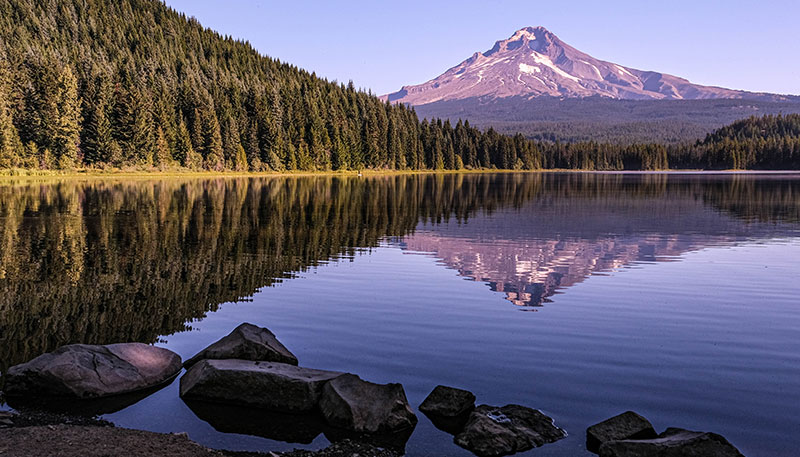 a lake with Mount Hood in the background and evergreen trees on the left.